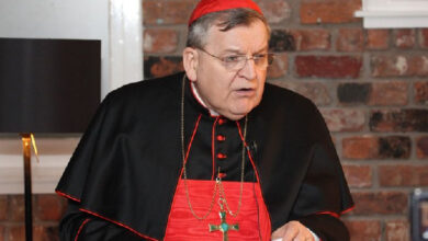 Photo of Pope Francis' declarations on gay marriage are his 'simple private opinions' – Cardinal Burke