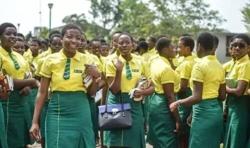 See how private schools will plight in the midst of reopening of schools in Ghana 3