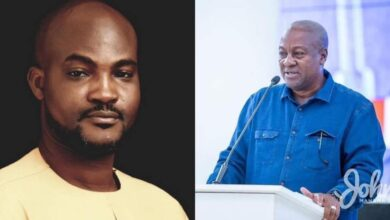 NDC Activist, Dzifa Gunu Pleads With John Mahama To Withdraw His Election Petition From The Supreme Court 2